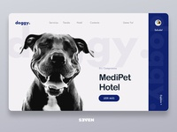 Interface design for veterinary clinic