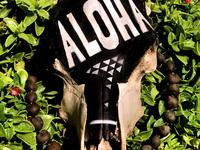 Aloha Dribble