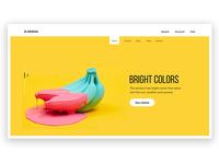 WEB Home Design