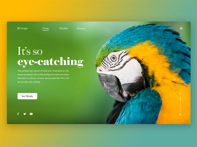 Eye-catching image product details 产品 插图 概念 设计 艺术 ui 趋势 web