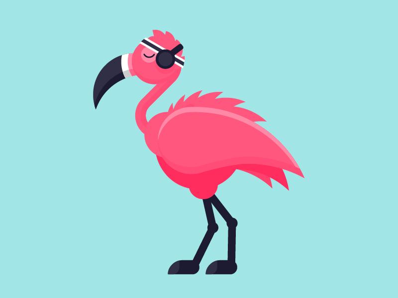 Flamingo flamingo illustration vector