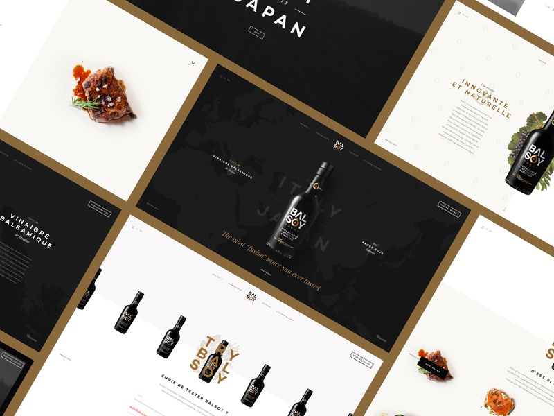 Balsoy Sauce wine taste tomato meat balsamic bottle balsoy food italy japan soy sauce vinegar
