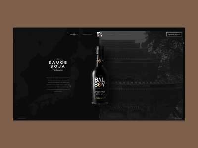 Balsoy - Ingredients scroll typography illustration map website banner website wine bottle flowers homepage balsamic vinegar soy sauce sauce parallax scroll balsoy
