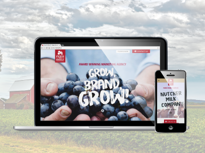 New Website for Ag Marketing Initiative lead generation responsive design