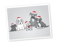 Puppies With Santa Hats