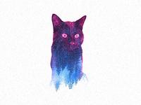 "My cat ""Pixel"""