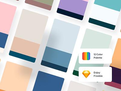 Freebie | 12 Color Palette - Color Exploration 02 minimal ui minimal palettes uiux ui components component web ui mobile ui ui palettes color palette palette
