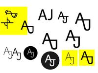 Portfolio logo design process