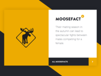 Roadworks MooseFacts