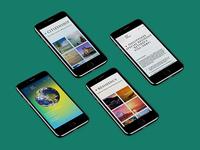Website Global World Citizenship