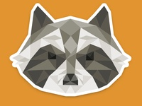 Polygon Raccoon