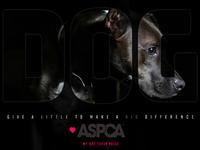 ASPCA Ad