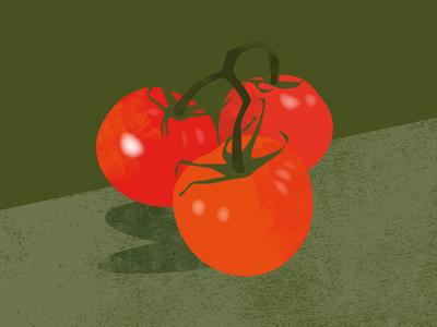 Tomato Illustration