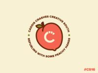 Caddis Crashes Creative South