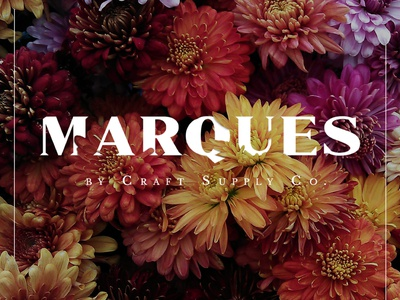 Marques logo design