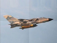 Combat Aircraft Illustration