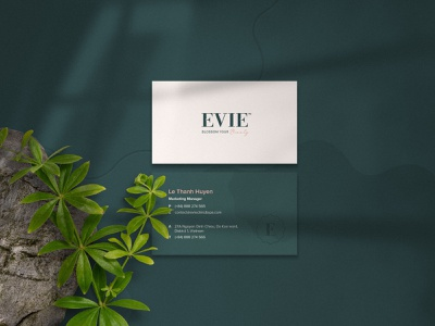 Evie Clinic & Spa Name Card spa clinic aesthetic brand identity namecard stationery stationery design design logo typography branding graphic design