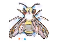 bee-a-utiful | sketching