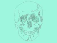 skullmania | sketching