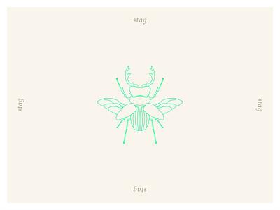 Coleoptera - Stag coleoptera beetle branding icon logo vector illustrator minimal illustration design