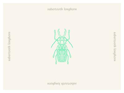Coleoptera - Sabertooth Longhorn coleoptera beetle branding icon logo vector illustrator minimal illustration design