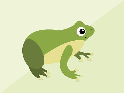 Frog Illustration illustration frog
