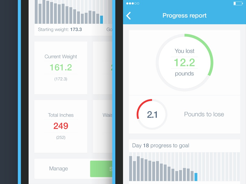 Bodytrack dashboard dashboard data ui ux graph ios7 app fitness wellness flat minimal simple