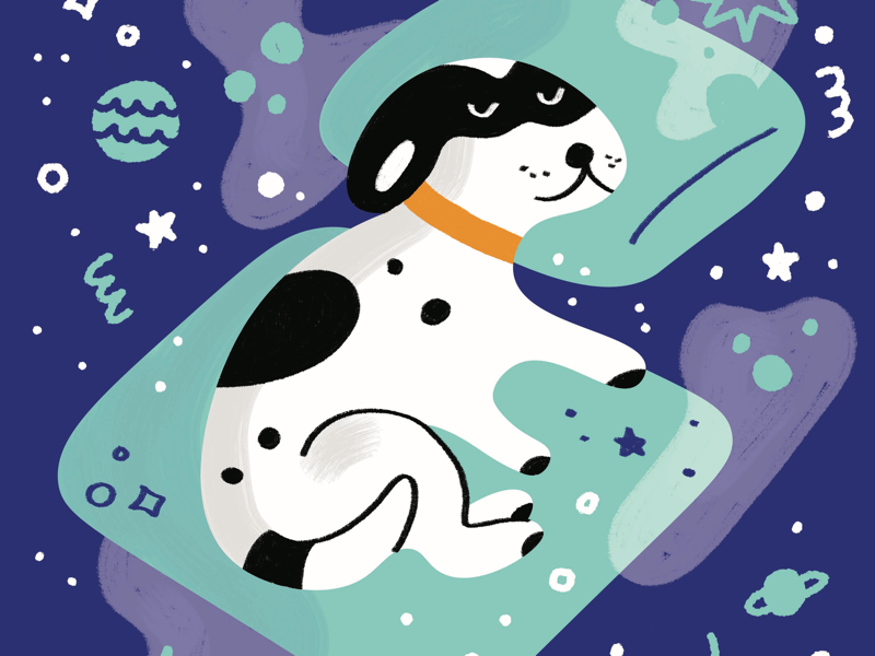 My dog in dream dimension instagram dimension dream specks work digital expensive open deep thoughts universe crazy design experiment portrait artwork illustration space doug
