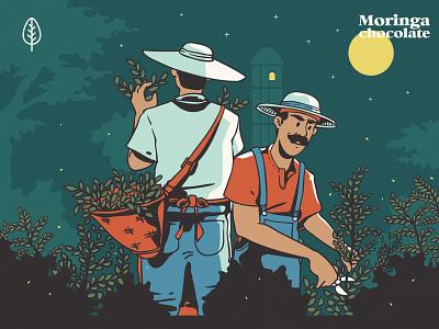 Moringa Farmers branding vector landingpage header illustration ui design graphicdesign illustrations flat illustration flatdesign