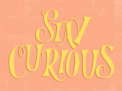 Staycurious lr 1
