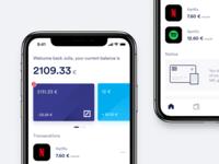 Finance art direction service illustraion data account banking finance iphone app ux ui