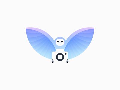 Camera Owl video gradient brand logotype logo animal blue wing negative space bird owl camera
