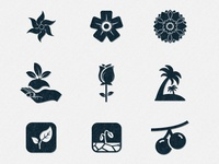 50 Highly Detailed Nature Vector Icons