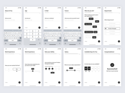 Job Application - Mobile Survey Wireframe