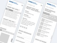 IEEE AlexSB Main Website