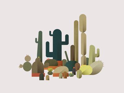 Cactus fiesta illustration flat green plants cactus