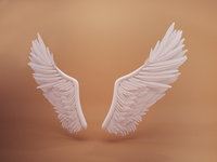 Day 7: Wings