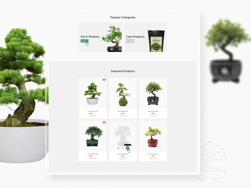 Bonsai Shop ux web design website branding design limely