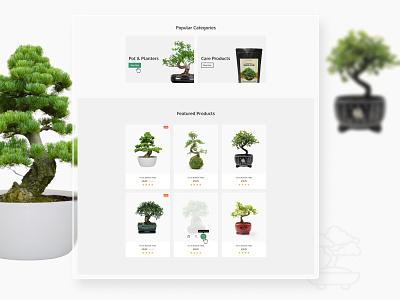 Bonsai Shop ux web design website branding design limely