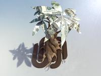 Squarespace Commerce Money Tree