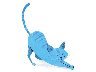 Chat bleu cat illustration chat