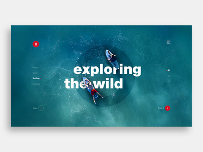 Exploring the wild ui web