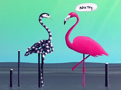 Nice Try, Flamingo