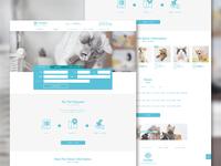 Pet Search Web Design