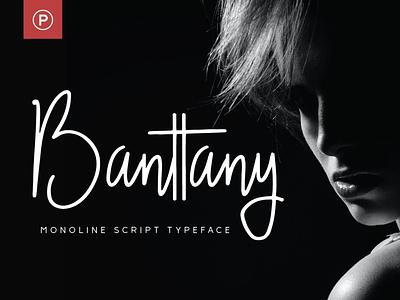 Banttany feminine monoline typography script handwritten display branding typeface type font