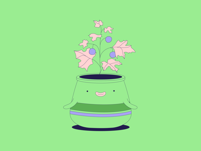 Pickle · Sycomore plant illustration smiley face minimalist flat illustration plant illustration