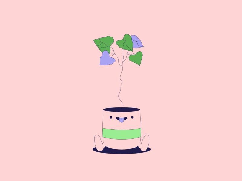 Pickle · Poplar plant illustration plant ui branding smiley face flat illustration minimalist illustration