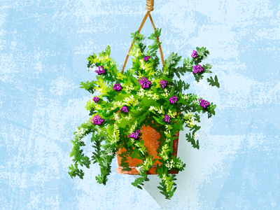 Summer Flowers heat hanging green purple garden fowers plant illustration
