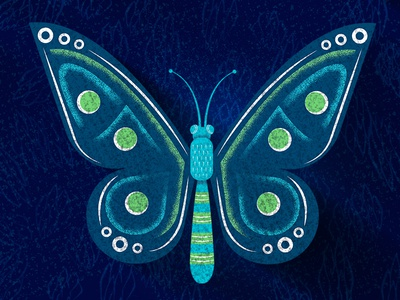 Butterfly insect sketch green blue grain butterfly illustration