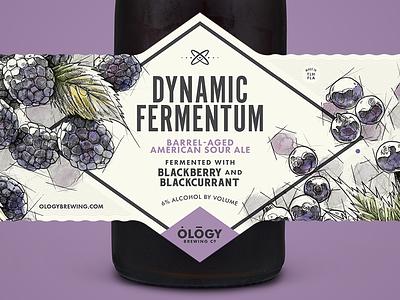 DF Blackberry & Blackcurrant illustration blackcurrant blackberry label sour beer